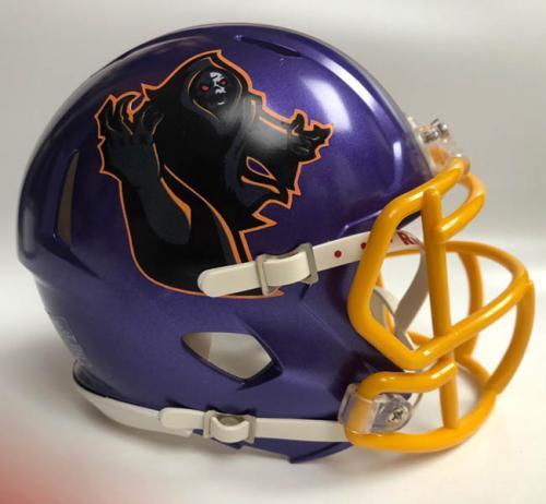 Graveyard Diggers custom fantasy football mini helmet