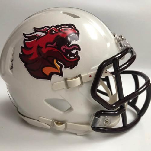 Kicking Cousins custom fantasy football mini helmet