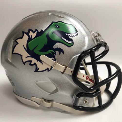 Los Bastardos custom fantasy football mini helmet
